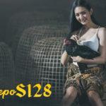 Cara Terbaik Dalam Merawat Sabung Ayam Bangkok