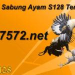 ku7572.net Link Alternatif Sabung Ayam S128 Terbaru 2019
