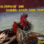 Situs Alternatif Judi Sabung Ayam S128 Terpercaya