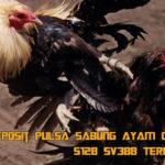 Situs Deposit Pulsa Sabung Ayam Online S128 SV388 Terlengkap