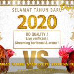 Situs Taruhan Sabung Ayam Online Indonesia Terpercaya