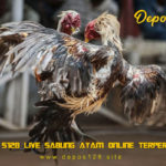 Agen S128 Live Sabung Ayam Online Terpercaya