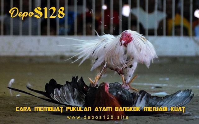 Cara Membuat Pukulan Ayam Bangkok Menjadi Kuat