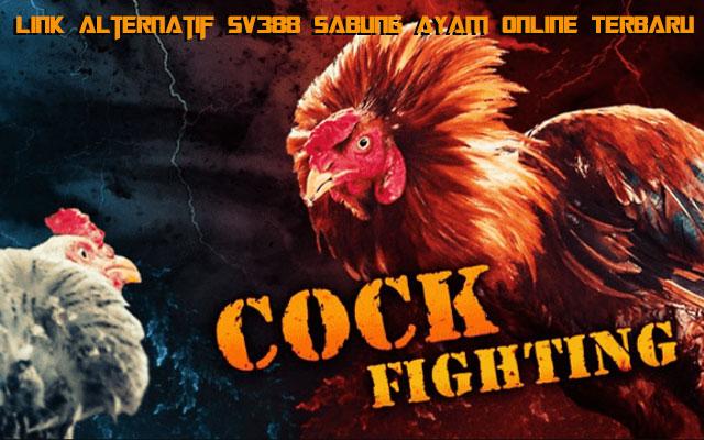 Link Alternatif SV388 Sabung Ayam Online Terbaru