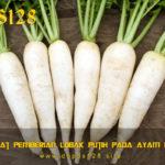Manfaat Pemberian Lobak Putih Pada Ayam Bangkok