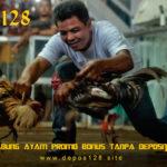 Situs Sabung Ayam Promo Bonus Tanpa Deposit Terbaru