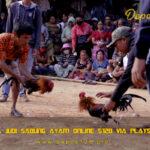 Cara Judi Sabung Ayam Online S128 Via Playstore