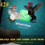 WhatsApp Bolavita Situs S128 Sabung Ayam Online Terpercaya