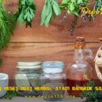 Membuat Reset Obat Herbal Ayam Bangkok Sakit Kuning