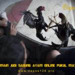 Bermain Judi Sabung Ayam Online Pukul Mati