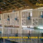 4 Hal Yang Harus Dipersiapkan Untuk Kandang Ayam Bangkok